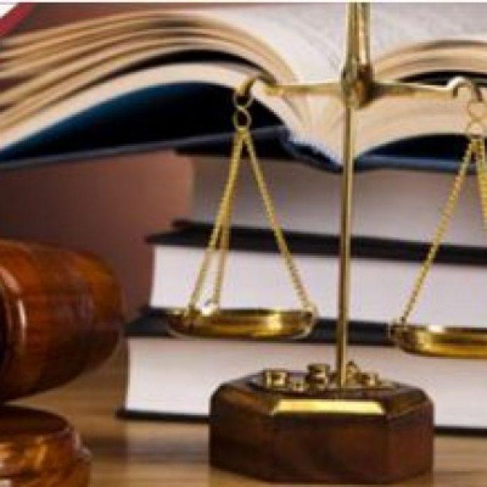 სტუდენტური ოლიმპიადა საკონსტიტუციო სამართალწარმოებაში, II ტურის I ეტაპის შედეგები