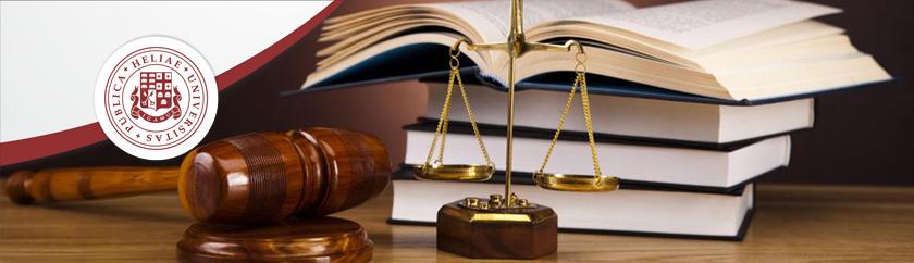"""<a href=""""https://conlaw.iliauni.edu.ge/samarthali-skolashi/"""">სამართალი სკოლაში</a>"""